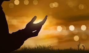 5 oraciones